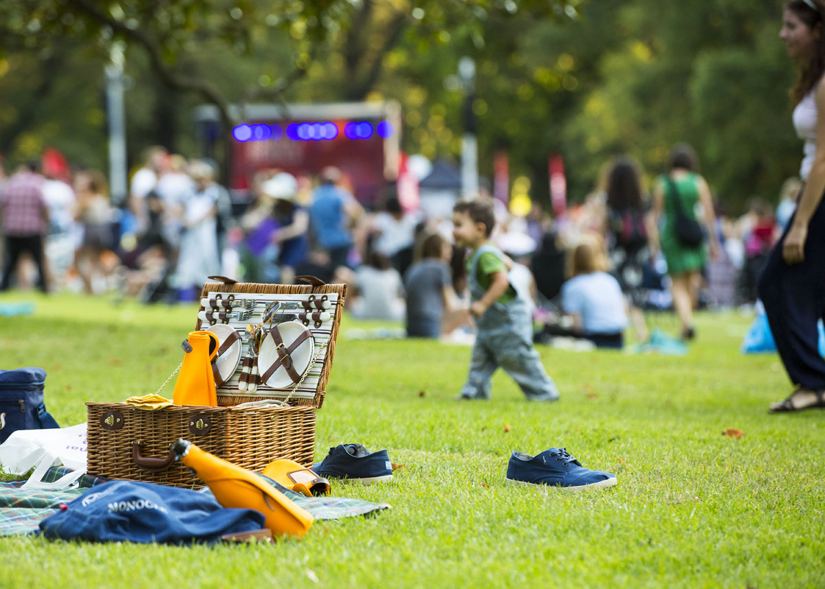 A picnic basket on the grass, with a young boy standing in the background.