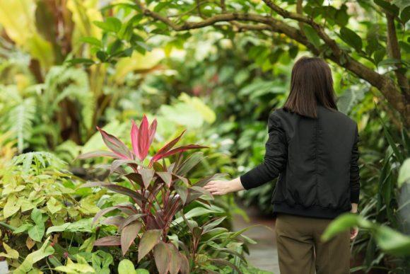 A girl walking through a tropical garden