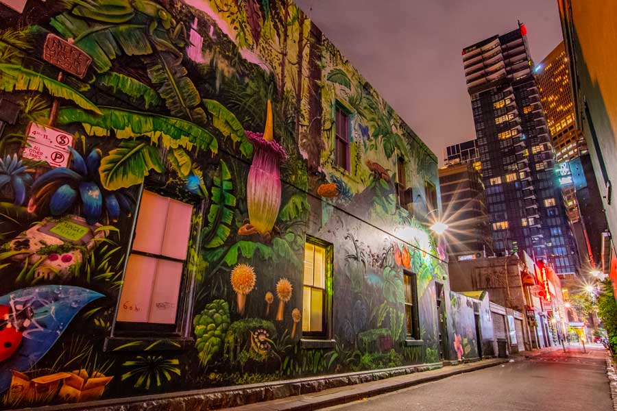 A huge street art mural on the wall of a laneway, with lit up skyscrapers in the distance