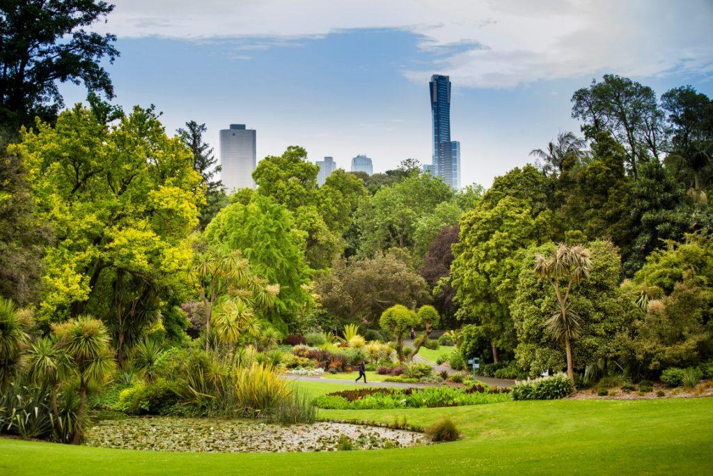 A sunny day in a bright green public garden