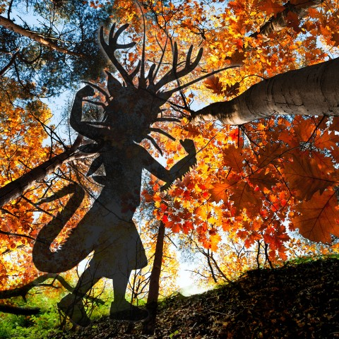 A silhouette of a child dressed like a monster set against a background of a forest