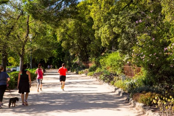 People running and walking along a leafy track next to a park