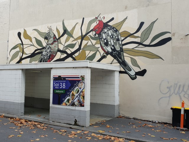 A street art mural above a concerte walkway in a city laneway