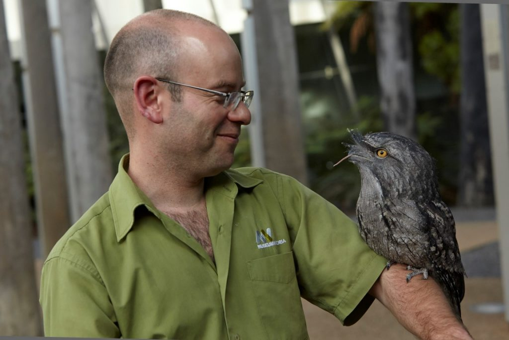 A man with a kookaburra perched on his arm