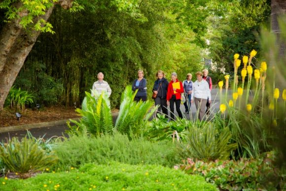A group of people walking in a park amongst trees, lawns, bushes and flowers