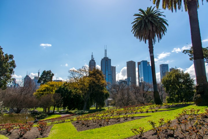 A park with the city skyline in the background