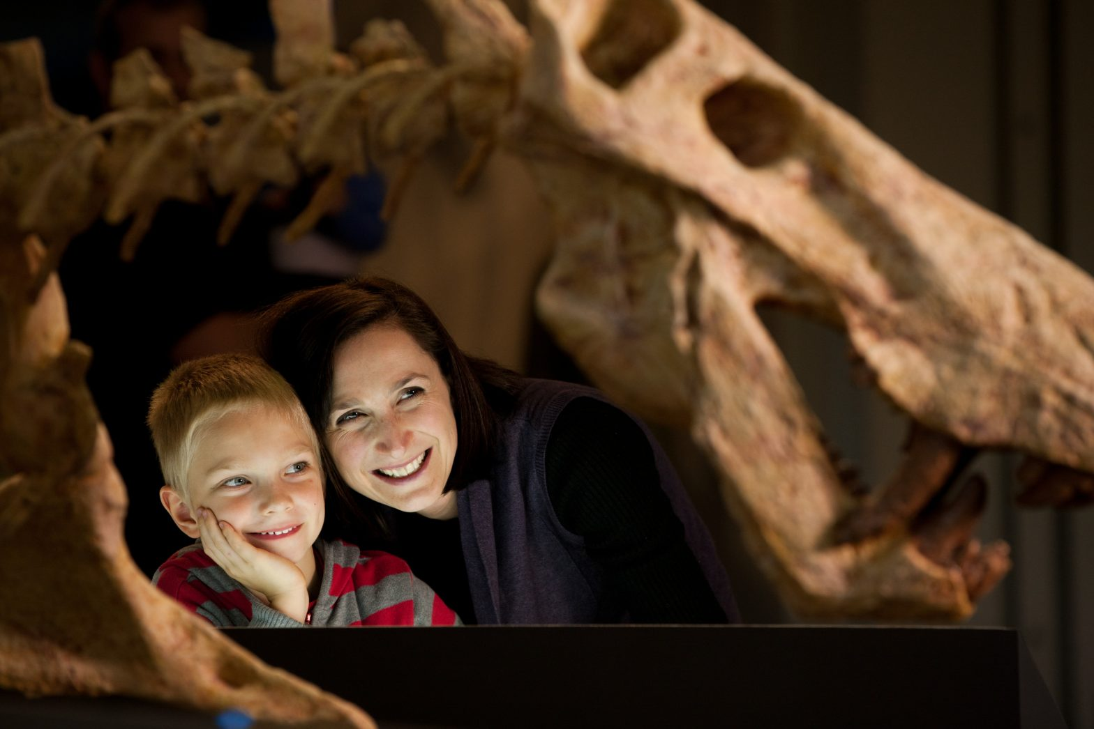 A child and woman looking at dinosaur bones