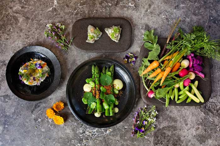 an aerial shot of a group of a bunches of vegetables and vegetarian dishes
