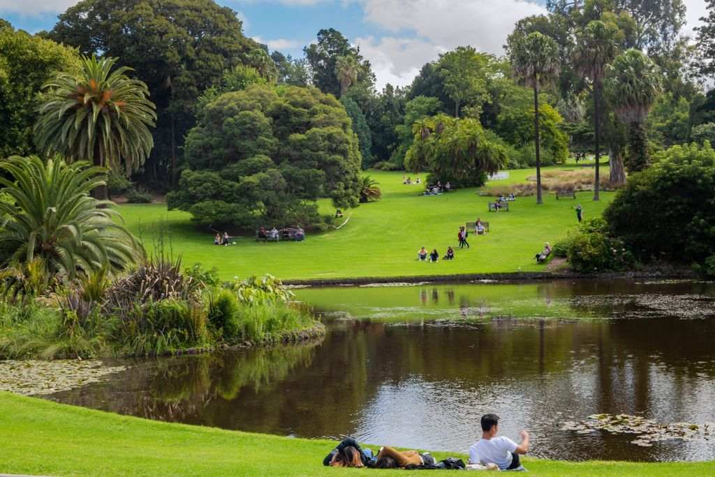 People on the lawns by the lake at the Royal Botanic Gardens