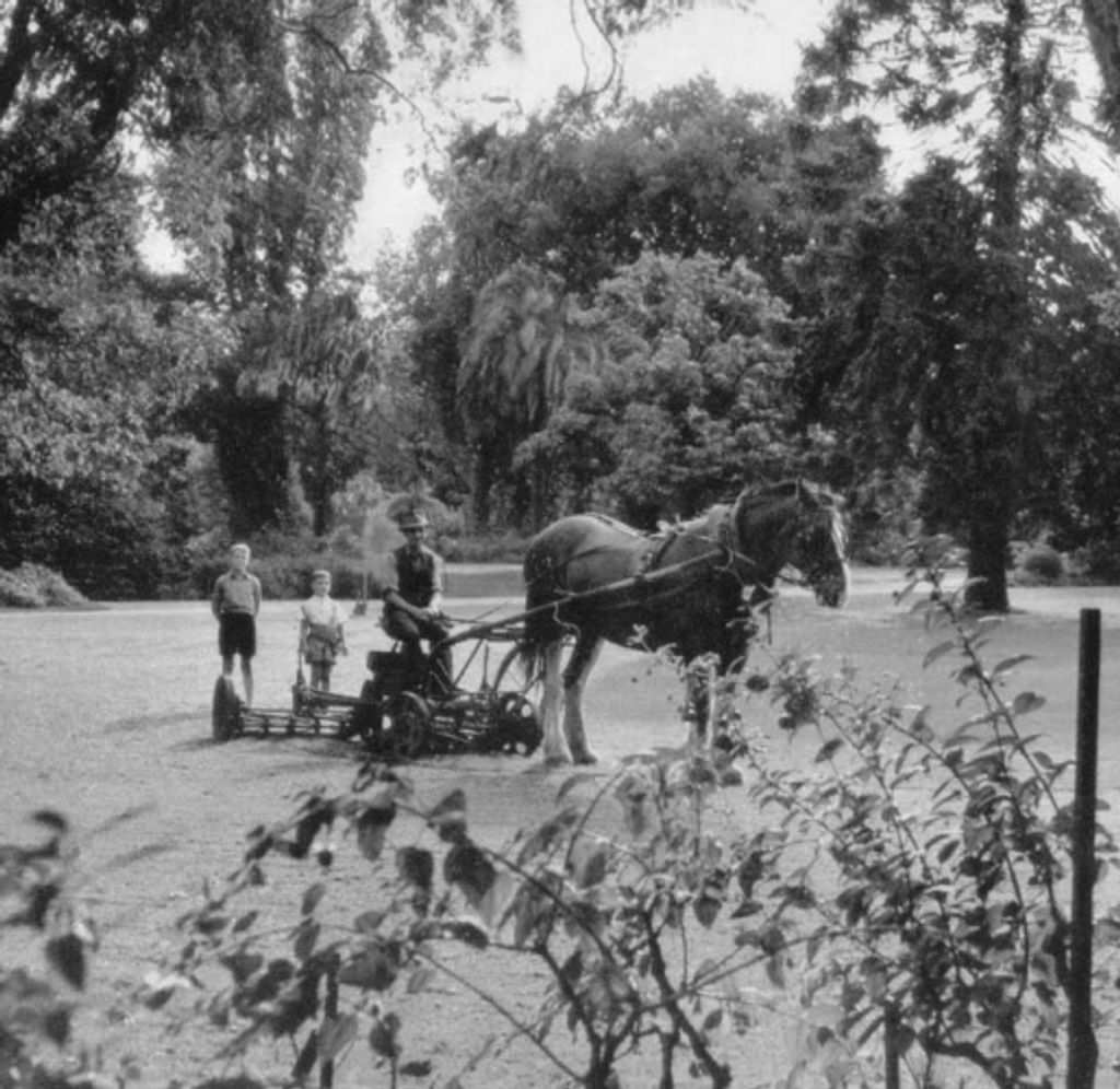 Black and white vintage photo of persona and two children with a horse at the Royal Botanic Gardens