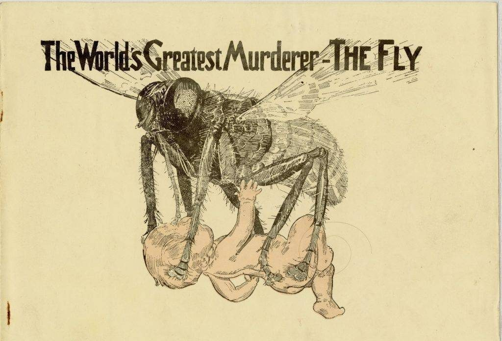 "Vintage adverisment for disinfectant with illustration of a huge fly stealing an infant with text ""The Worlds Greated Murderer - the Fly"