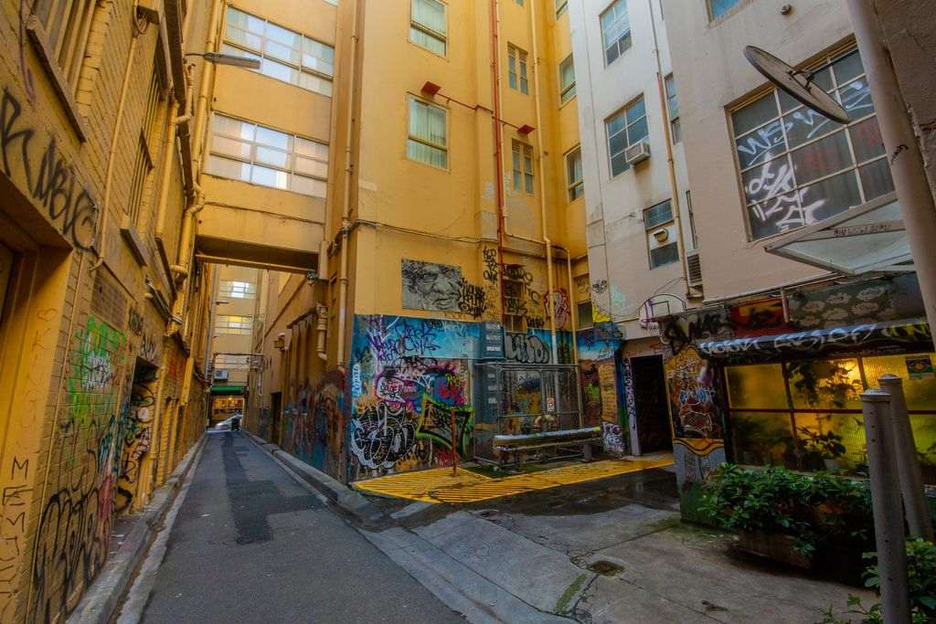 A city laneway with artworks on it