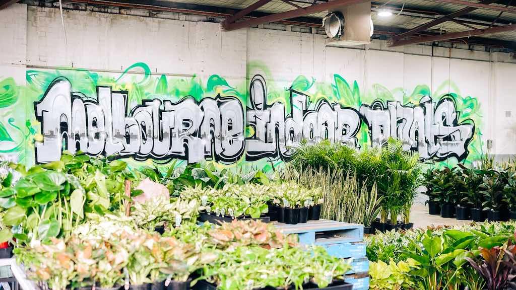 Melboure Indoor Plant warehouse