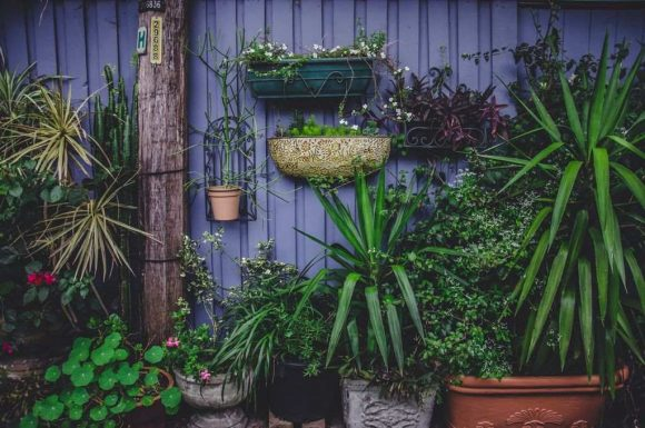 Melbourne's best garden gadgets and tools