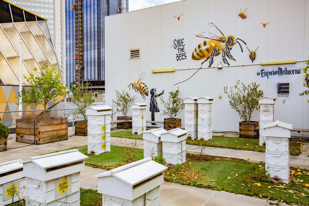 A rooftop with beehives on it