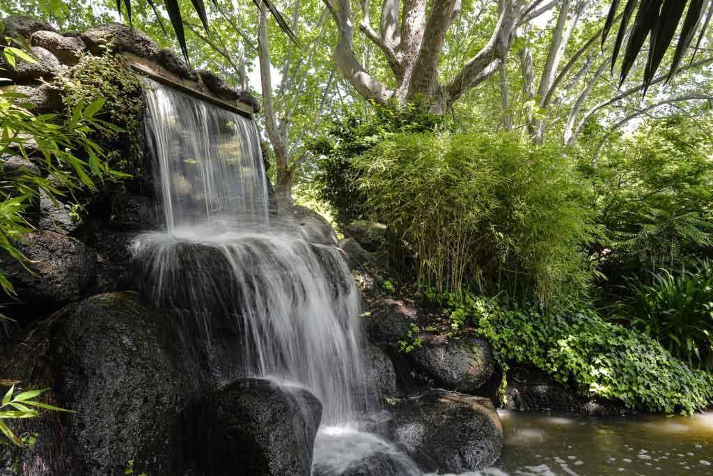 A waterfall in a garden